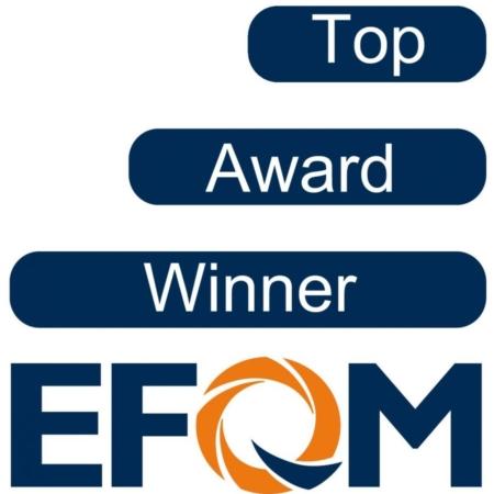 مدل تعالی سازمانی (EFQM)